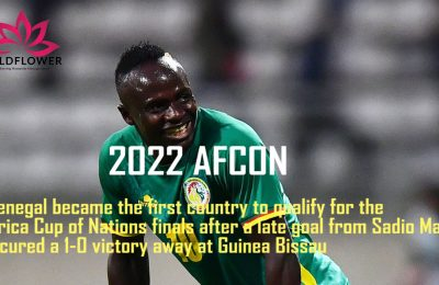 The 33rd Edition of the 2021 Africa Nations Cup is scheduled to take place in January 2022